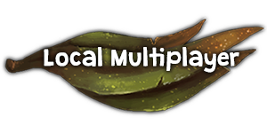 Local Multiplayer